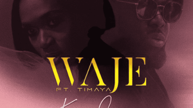 Photo of Download : Waje ft. Timaya – Kponlongo (Prod. by Miconbeatz)