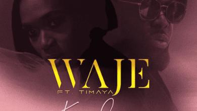 Photo of Download : Waje ft. Timaya – Kponlongo (Prod. by Miconbeatz)