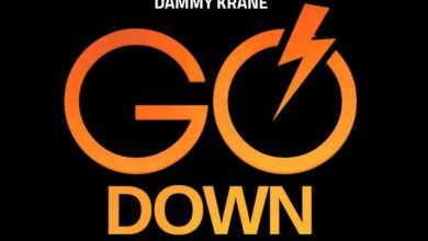 Photo of Download : Dammy Krane X Dj Dotwine – Go Down (Prod By Dicey)