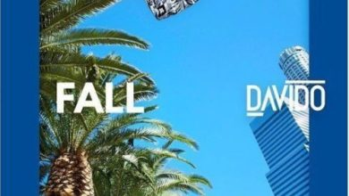 Photo of Download : Davido – Fall (Remix) Ft Busta Rhymes x Prayah