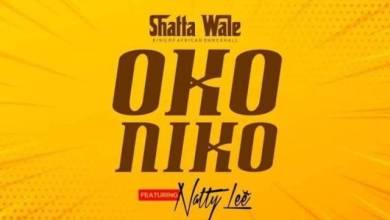 Photo of Download : Shatta Wale – Oko Niko Ft Natty Lee (Prod By Paq)
