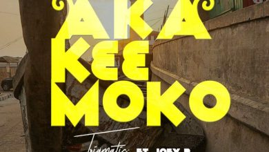 Photo of Download : Trigmatic – Aka K33 Moko FT Joey B (Prod. by Genius Selection)