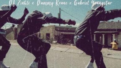 Photo of Download : Dammy Krane x DJ Zinhle x Gabriel Youngstar – Heavy Duty