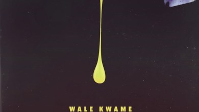 Photo of Download : Wale Kwame Ft. Davido & Kwesi Arthur – All Over You (Prod. By Shizzi)