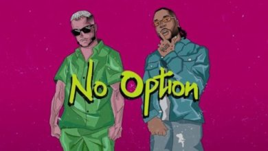 Photo of Download : DJ Snake Ft Burna Boy – No Option