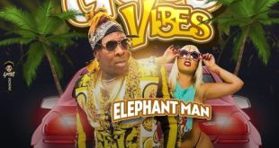 Elephant Man – Good Vibes