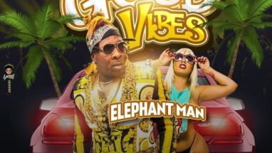 Photo of Download : Elephant Man – Good Vibes