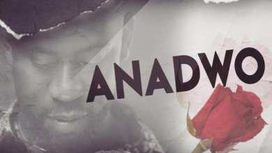 Photo of Download : Bisa Kdei – Anadwo (Prod. By Apya)
