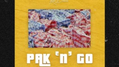Photo of Download : Kizz Daniel – Pak N Go