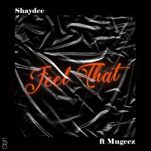Shaydee Ft Mugeez (R2Bees) – Feel That