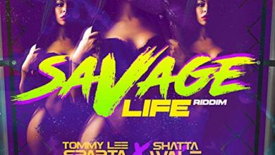 Photo of Shatta Wale x Tommy Lee Sparta – Savage Life (Prod By Damage Musiq)