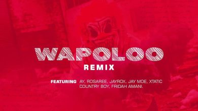 Photo of Weusi Ft. Ay x Rosaree x Jayrox x Jay moe x Country boy x Xtatic x Fridah Amani – WAPOLOO Remix