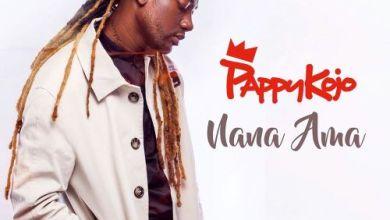 Photo of Pappy Kojo – Nana Ama