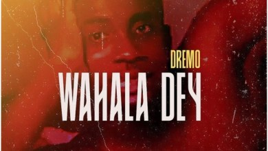 Photo of Dremo – Wahala Dey Lyrics