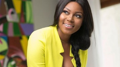 Photo of Relax with the borrowing, invest in fixed assets – Yvonne Nelson advises