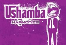 Photo of Harmonize – Ushamba (Prod. By Yung Keyz)