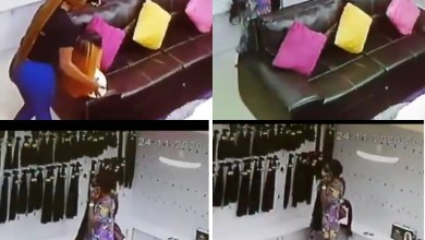 Photo of Saxy Lady Seen On Camera Stealing Hair Worth 200000 Naira In A Shop – Video