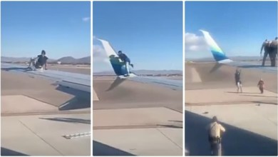 Boy Jumped On Plane Wing As It Was Going To Take Off, What Happen Next Is Sad - Video