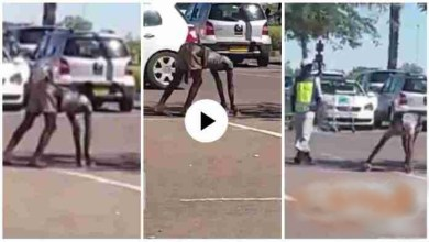 Photo of Lady Turns Into Goat After Picking Money 4 School Kids – Video