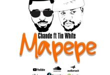 CHANDE Ft. TINI – Mapepe