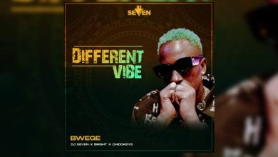 Photo of Dj seven Ft. Bright & Chidokeyz – Bwege