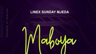 Photo of Linex – Maboya