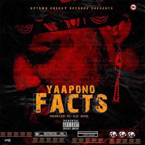 Yaa Pono - Facts (Shatta Wale Diss)