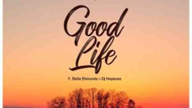 Photo of DJ Neptune – Good Life Ft Bella Shmurda