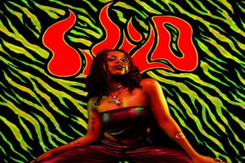 Lady Donli – Dragon Fruit Freestyle Lyrics