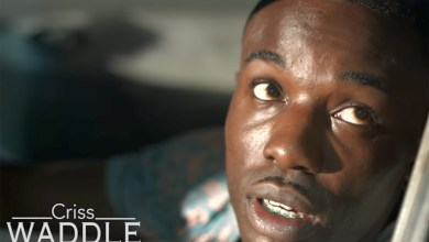 Photo of Video Premiere: Bokoor Di3 by Criss Waddle