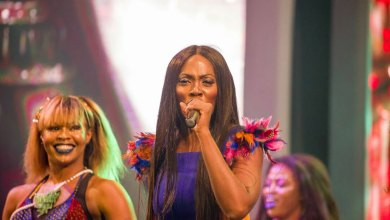 Photo of Video: Tiwa Savage's performance at Ghana Meets Naija '17