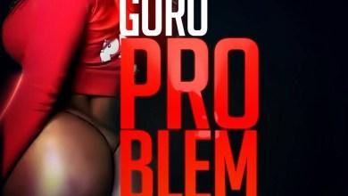 Guru - Problem