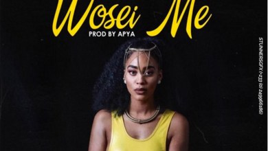 Photo of Audio: Wosei Me by Corby Rhymez feat. LMX & Manlike