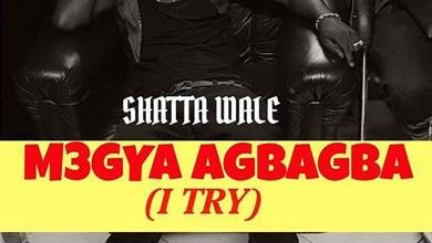 M3gya Agbagba (I Try) by Shatta Wale