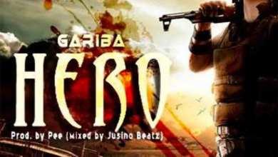 Photo of Audio: Hero by Gariba