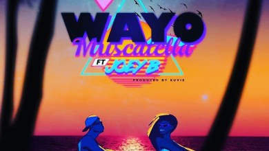 Photo of Audio: Muscatella by Wayo feat. Joey B