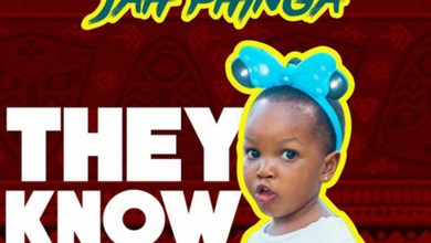Photo of Audio: They Know by Jah Phinga
