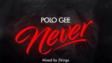 Photo of Audio: Never by Polo Gee