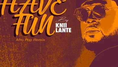 Photo of Audio: Have Fun (Afro Pop Remix) by Knii Lante