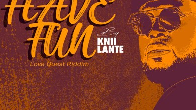 Have Fun by Knii Lante
