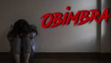 Photo of Video: Obimbra (Viral Video) by Samini