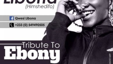 Tribute To Ebony by Libona