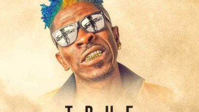 True Believer by Shatta Wale feat. Addi Self & Natty Lee