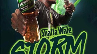 Photo of Audio: Storm by Shatta Wale