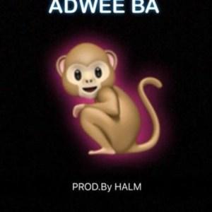 Adwee Ba by Medikal