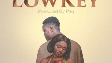 Photo of Audio: Lowkey by Offei