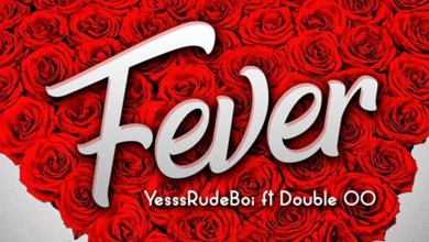 Photo of Audio: Fever by Yesssrudeboi feat. Double OO