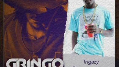 Photo of Audio: Casanova (Gringo Riddim) by Trigazy