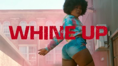 Photo of Video: Whine Up by Reggie 'N' Bollie