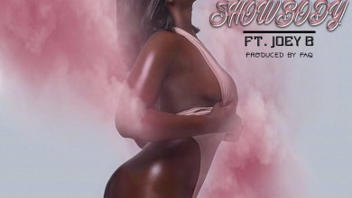 Photo of Audio: Show Body by Stylin feat. Joey B